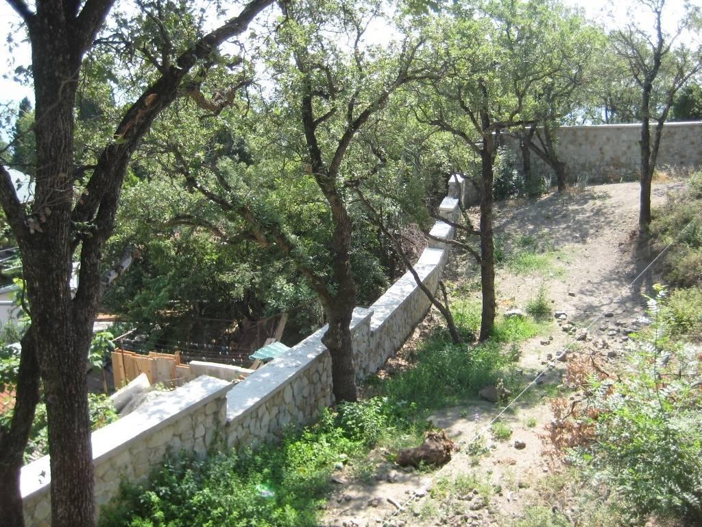Закладка сада. Тенистые и открытые зоны. Сохранение растительности